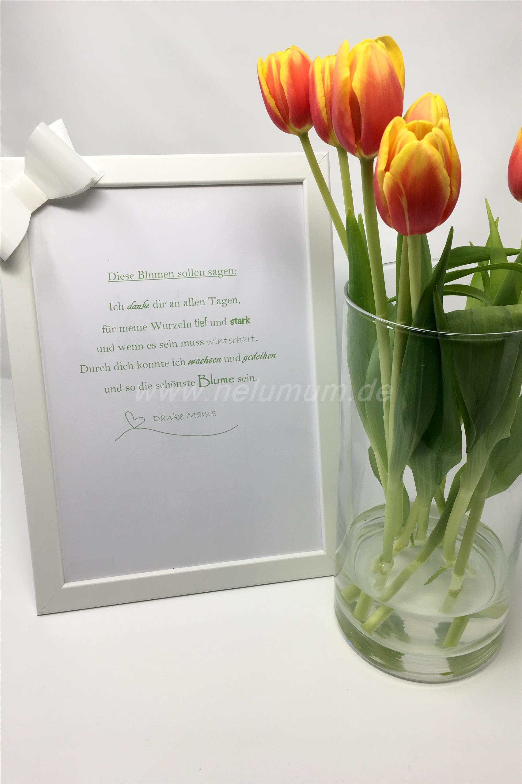 Kleine Gedichte Zum Muttertag Nelumum