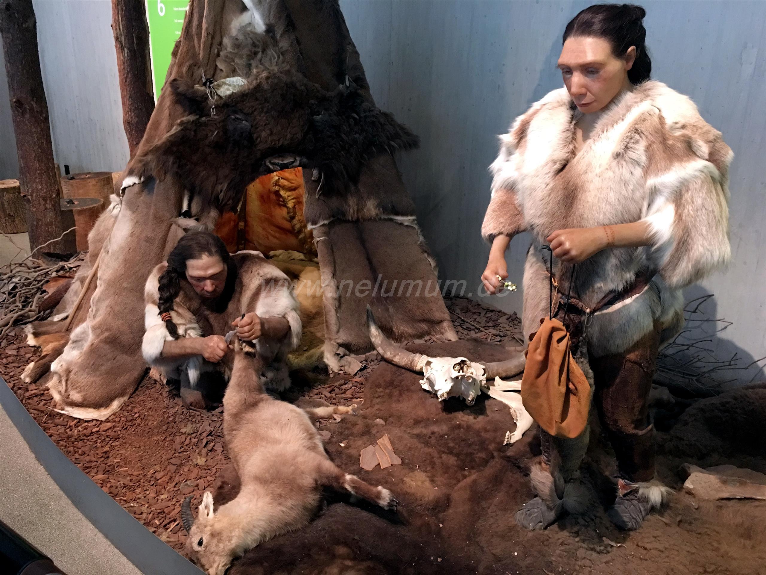 Ausflug ins Neanderthal Museum